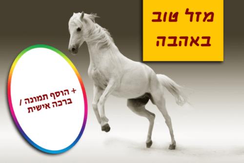 מגנטה - ברכות ליום הולדת, מסגרות לברכות עם תמונות ליום הולדת שמח - סוס לבן