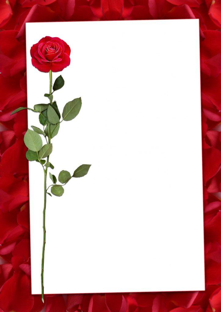 מסגרת לברכה ליום הולדת - פרחים (1)