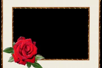 מסגרת לברכה ליום הולדת – יום הולדת שמח פרחים – 2