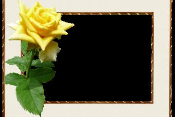 מסגרת לברכה ליום הולדת – יום הולדת שמח פרחים – 4