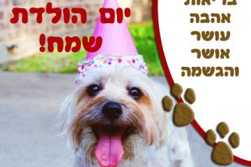 תמונה ליום הולדת עם מסגרת לברכה – כלב כובע ליצן